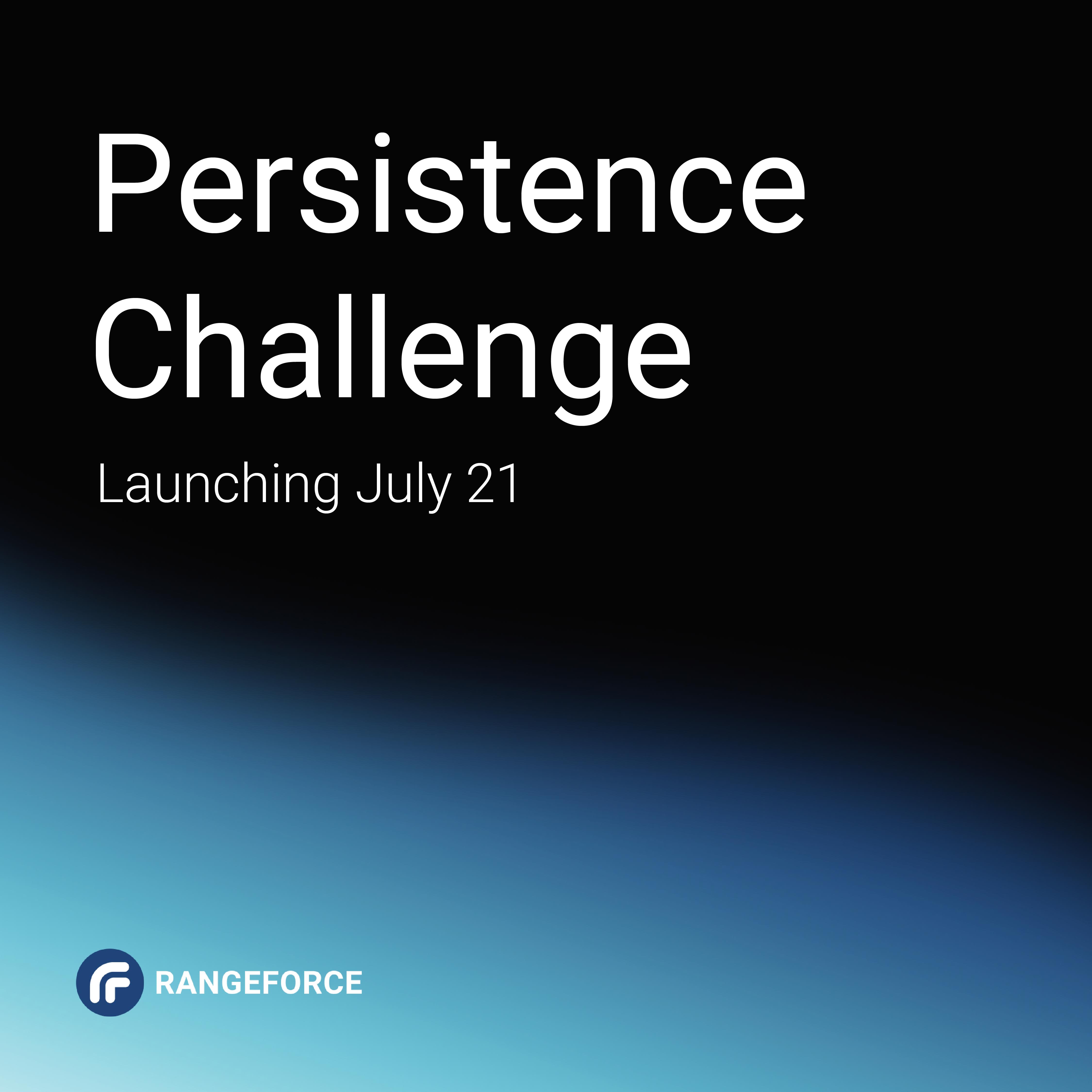persistence challenge 2